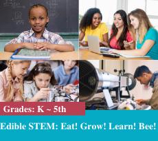 EDIBLE STEM GARDENS CAMP